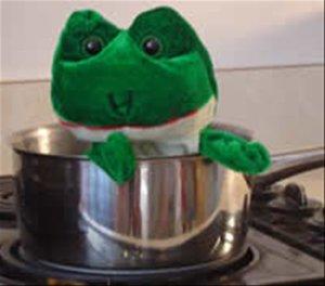 frog2[3]-787880